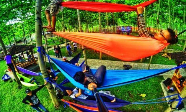 Wisata alam hammock bukit dhoho indah kediri