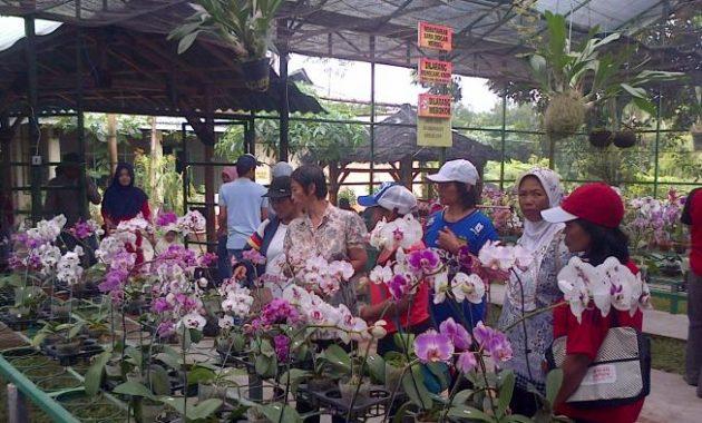 Wisata edukasi kampung anggrek kediri