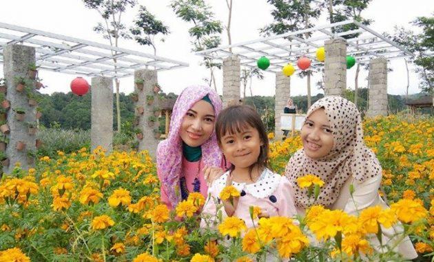 Taman bunga Kediri Agro Margomulyo