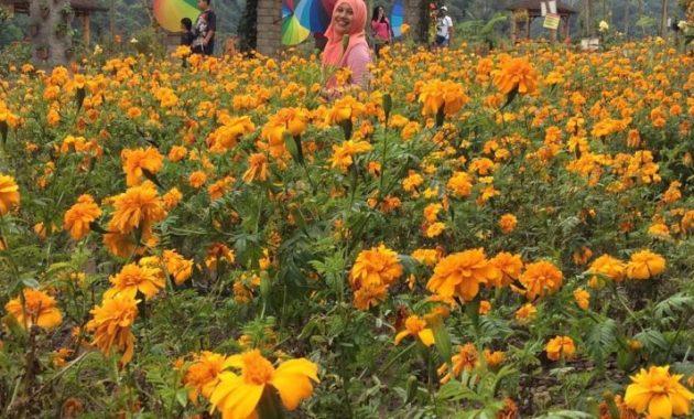 Taman bunga kediri hits agro margomulyo