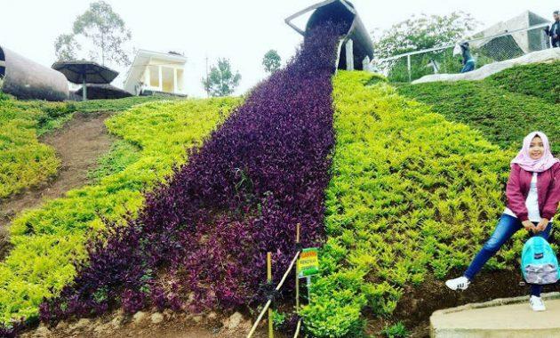 Lokasi wisata taman kelinci pujon malang