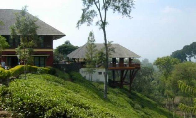 Penginapan Wisata Kebun Teh Wonosari Lawang Malang