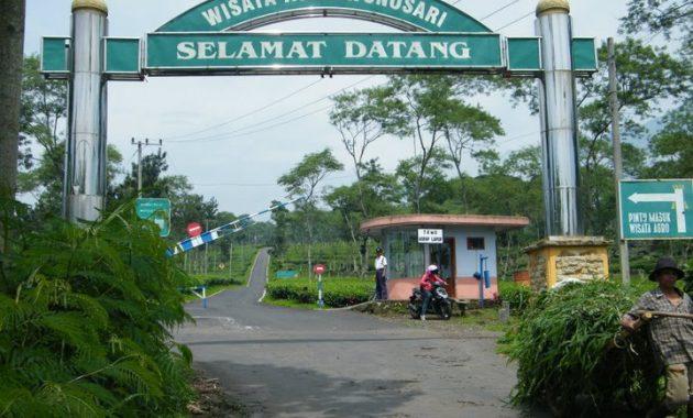 Tiket Masuk Wisata Kebun Teh Wonosari Lawang Malang