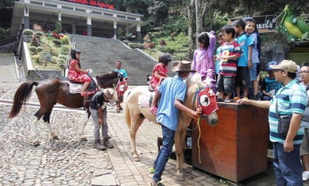 Berkuda di taman rekreasi selecta batu malang