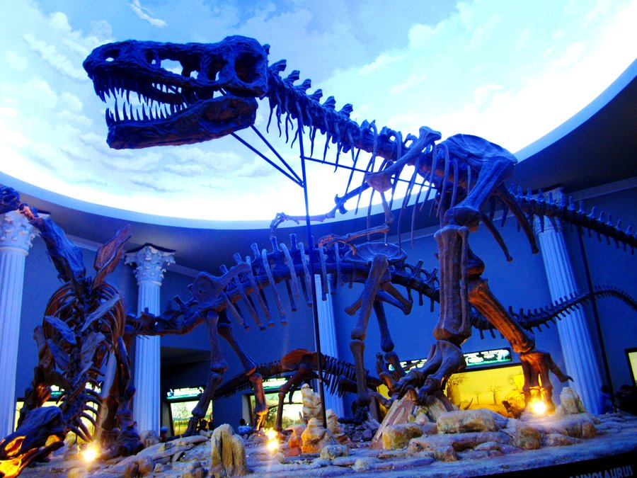 Museum satwa jatim park 2 malang