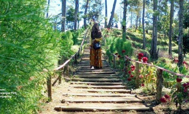 Alamat-hutan-pinus-nyawangan-park-tulungagung