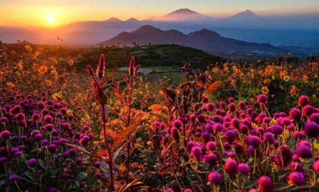 Lokasi-gardu-pandang-silancur-highland-magelang