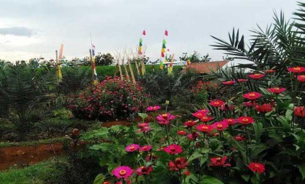 Keindahan-agrowisata-magetan-green-garden