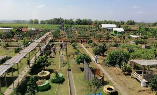 Wisata-magetan-agrowisata-green-garden